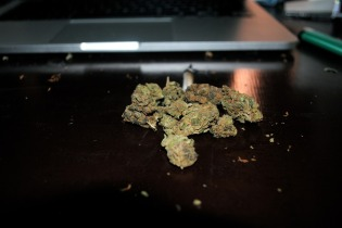 Cannabis Content, Marijuana Website, cannabis business, start a website, make money online